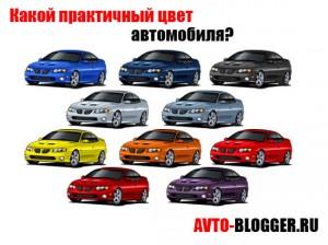 praktichniy_cvet