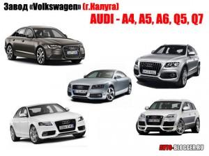 Завод «Volkswagen» (г.Калуга) - AUDI