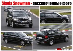 Skoda Snowman